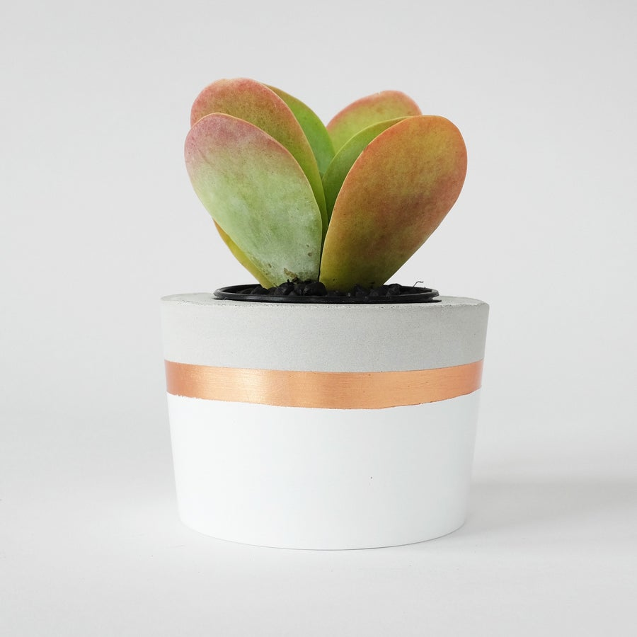 Image of Planter - White & Copper