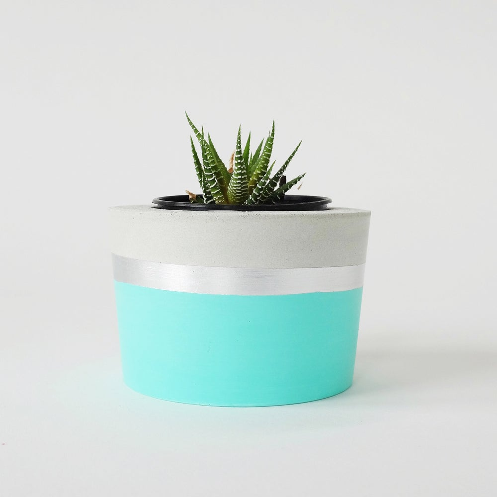 Image of Planter - Spearmint & Silver
