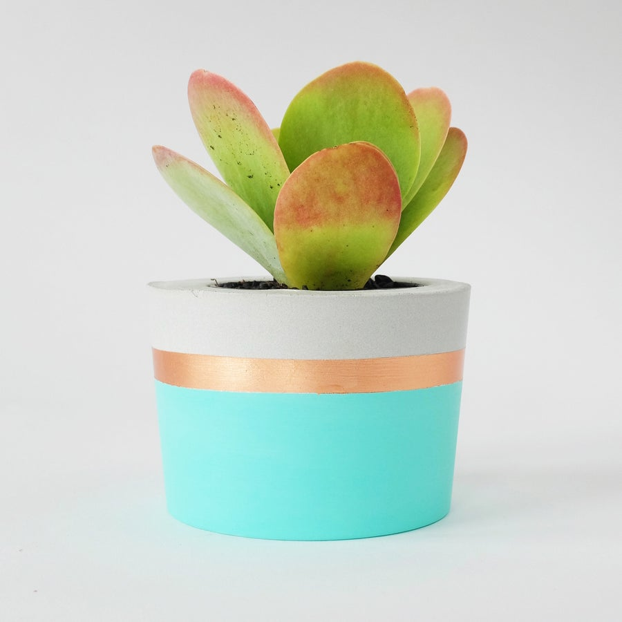 Image of Planter - Spearmint & Copper