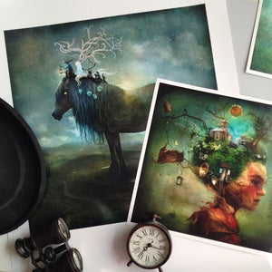 """The Grove"" - Alexander Jansson Shop"