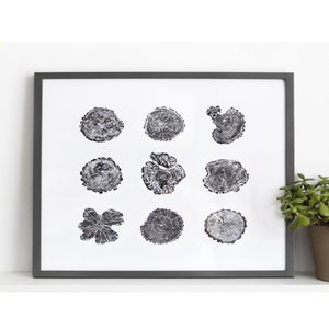 Image of Giclee Stump Print <br><i>Grove</i>