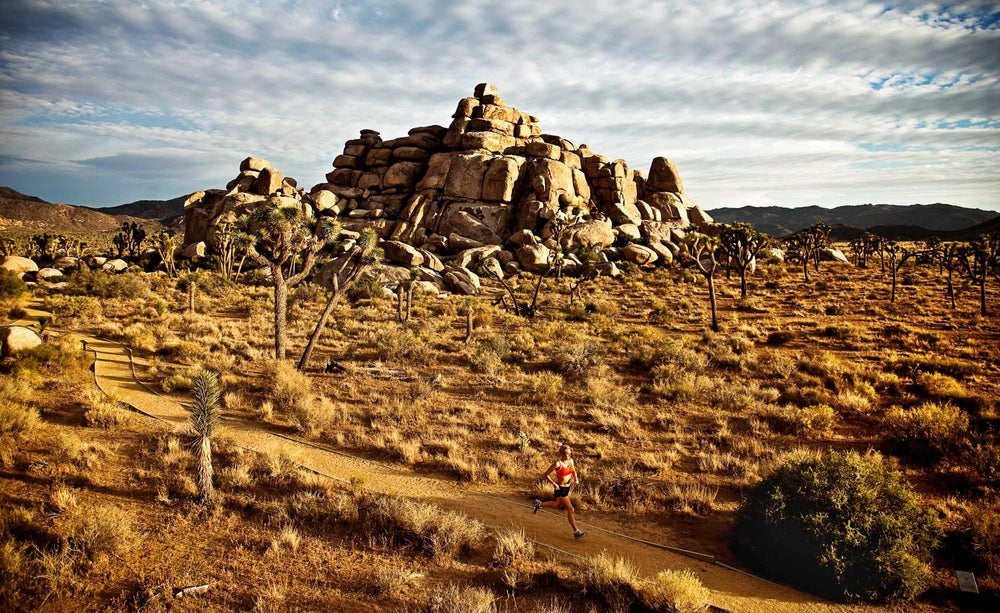 Image of Rave Runs - Joshua Tree