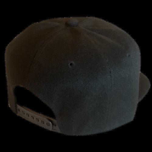Image of Legendary American Dont Tread Snapback hat