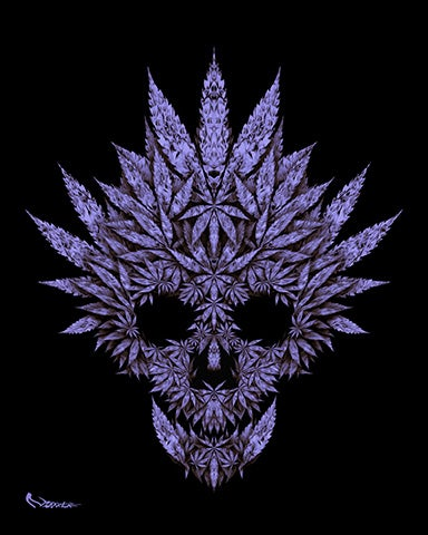 Image of Purple Haze Skull