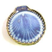 Image of medium shell plate