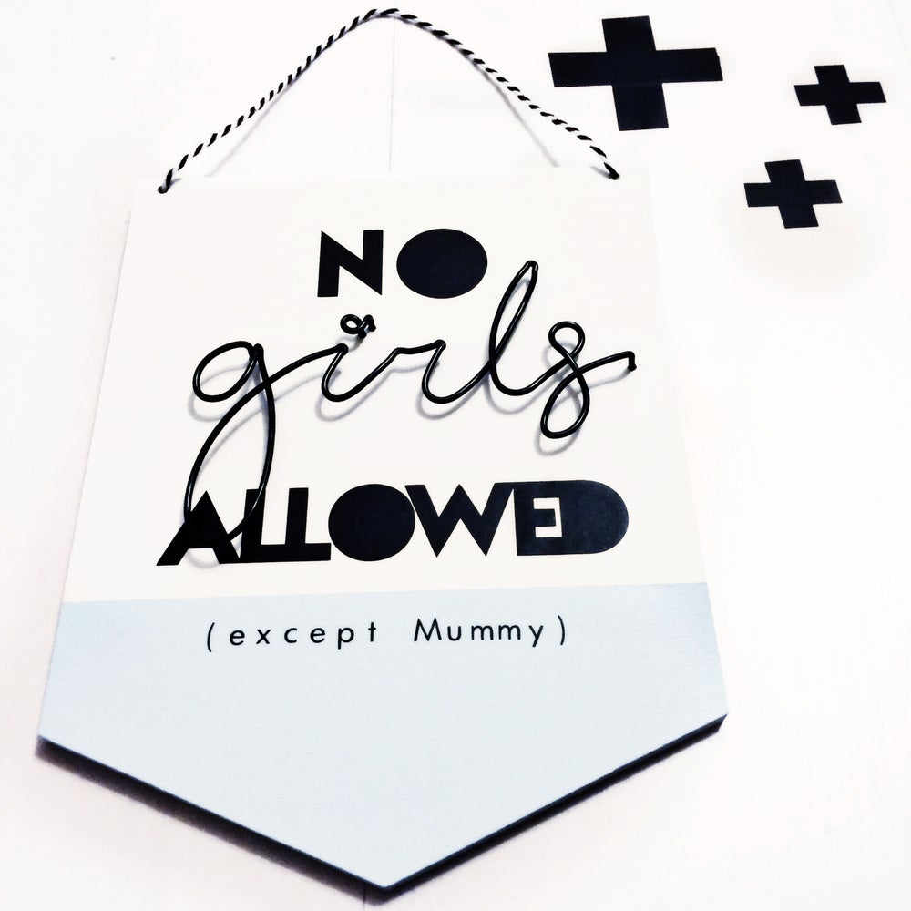 Image of No Girls Allowed flag