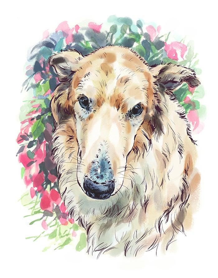 Image of Custom Animal Portraits
