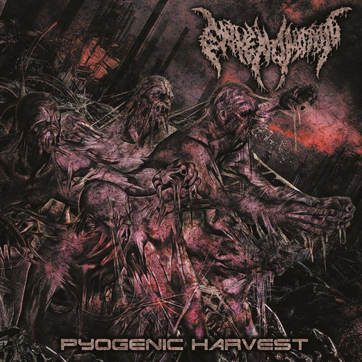 Image of Envenomation - Pyogenic harvest
