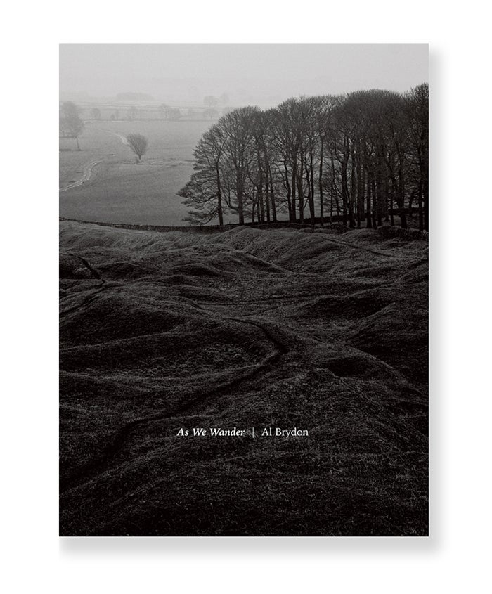 Image of Al Brydon - As We Wander