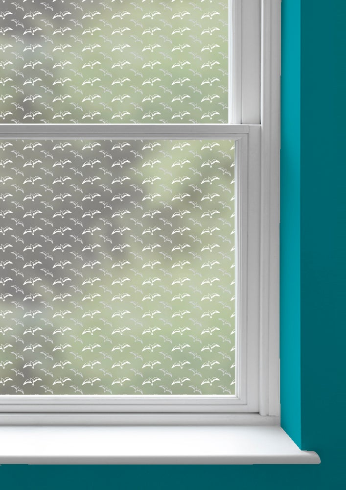 Image of Gulls Window Film