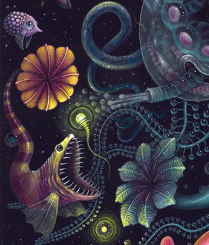 """Image of SIPHONOPHORE ~ 18 x 18"""" Signed Open Edition Print"""