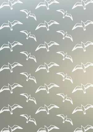 Image of Gulls Window Film