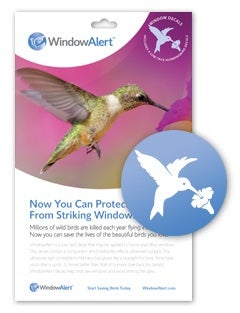 Image of Hummingbird Decals- 4 Decal Pack