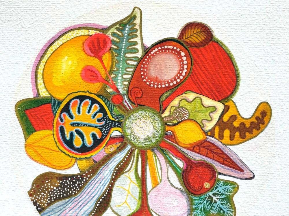 Image of Koyo/ A circle of Autumn