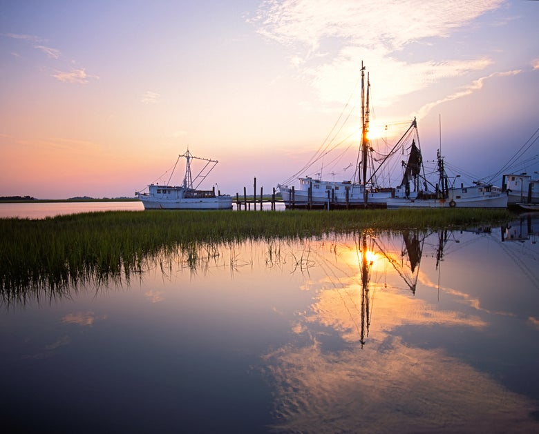 Image of Shrimp boats