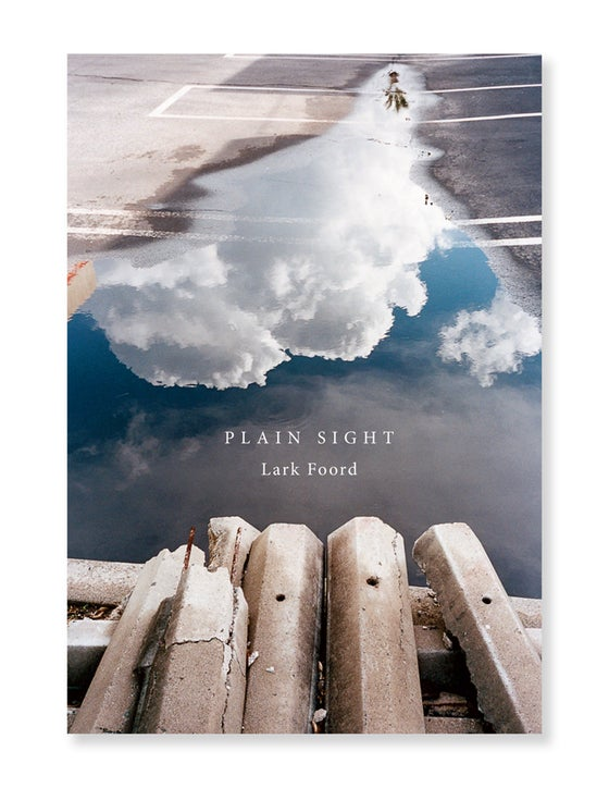 Image of Lark Foord - Plain Sight
