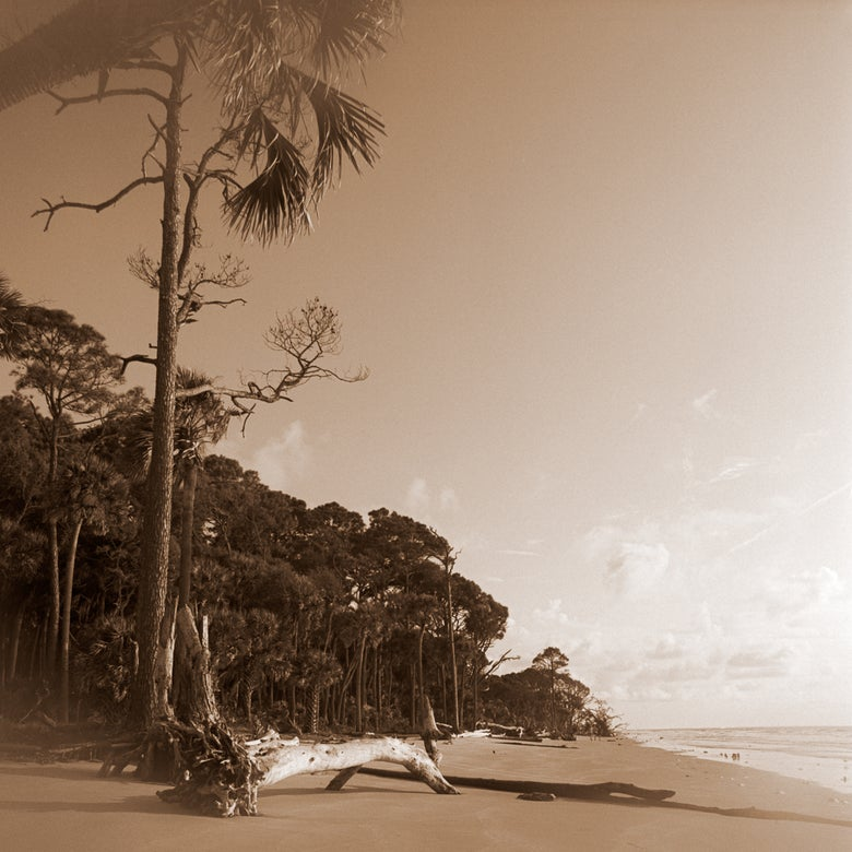 Image of Hunting Island Beach