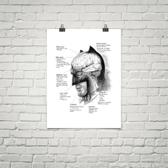 Image of Neuroscience of Batman - Art Prints