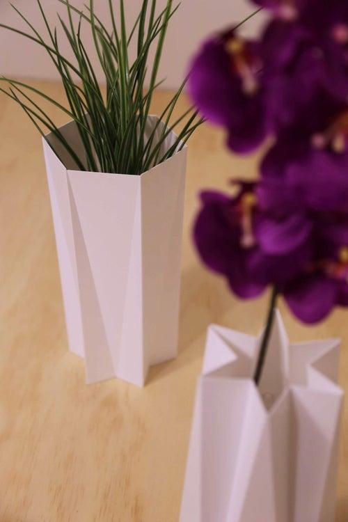 Image of Gemini Eco-Vase