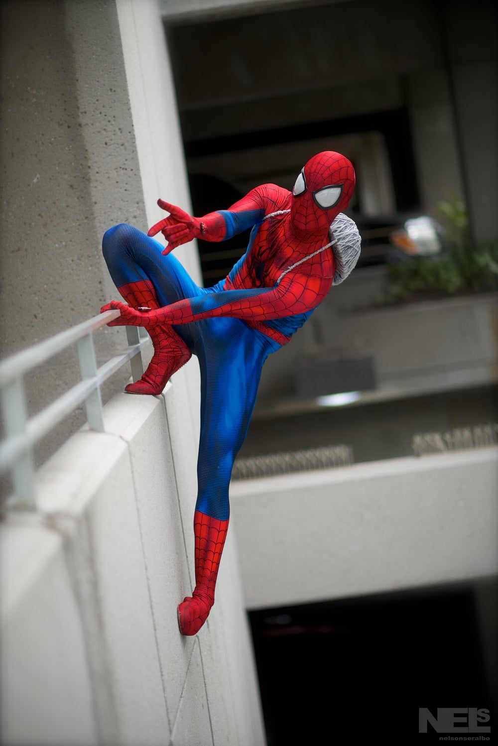 Image of Ultimate Spider-man