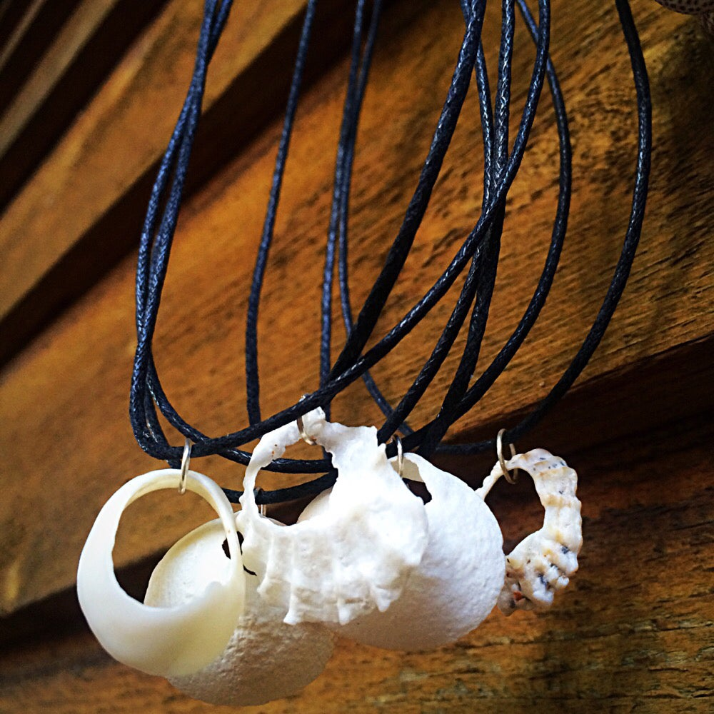 Image of Seashell Hoop Necklace |NOTS|