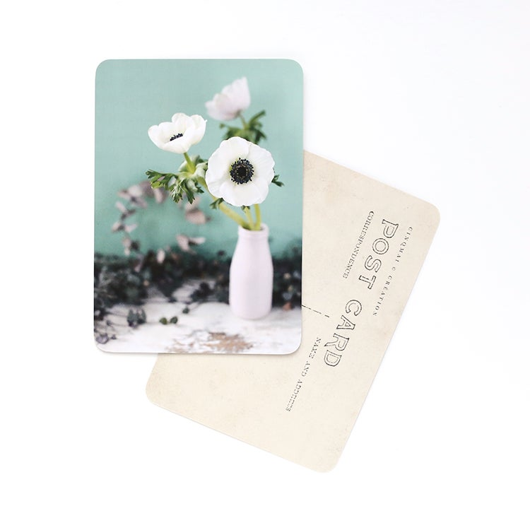 Image of Carte Postale ANÉMONE / WHITE AND MINT