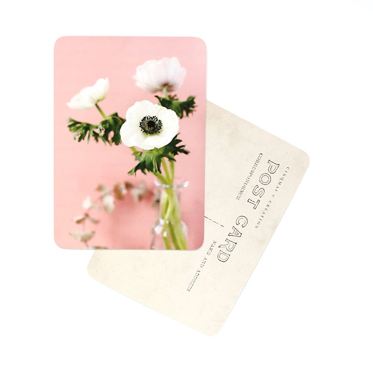 Image of Carte Postale ANEMONE / WHITE AND CORAL