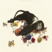 Image of Kirsty Whiten- Flower Monkey- Giclee Print- A2