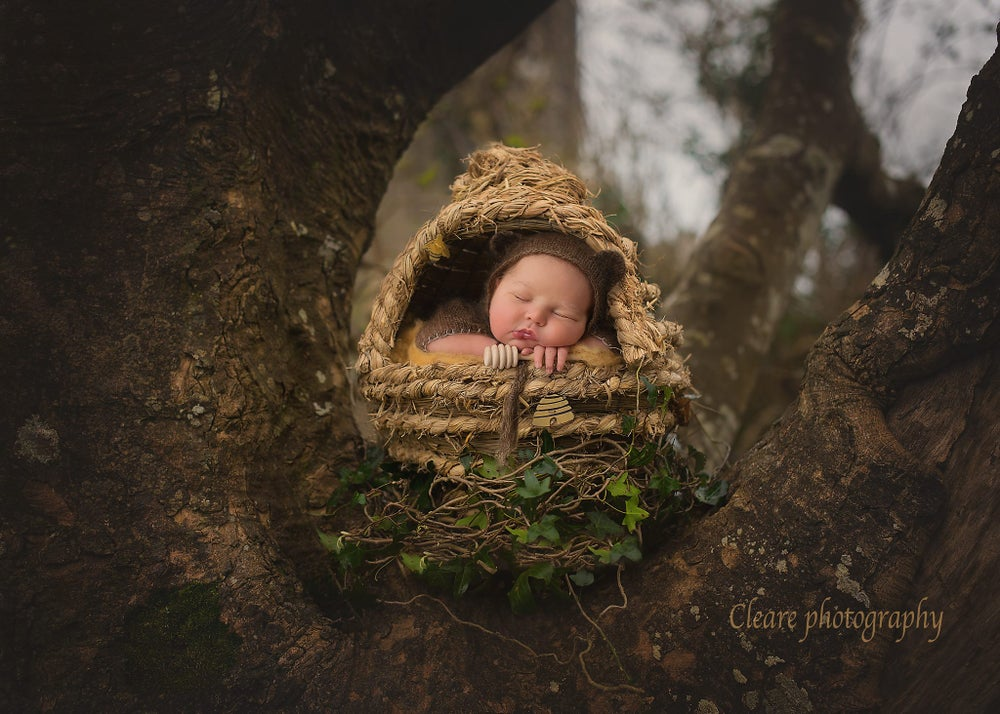 """Image of  Newborn Baby """"Honey Comb"""" Bee Hive with Removable Top! Another Woodsy Wonders Original!"""