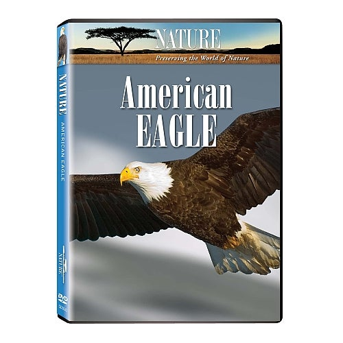 Image of Extraordinary Birds and American Eagle