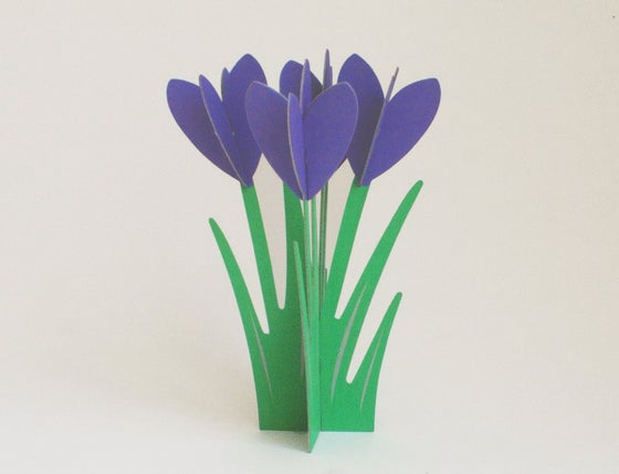 Image of 2 x CUT&MAKE - CROCUSES