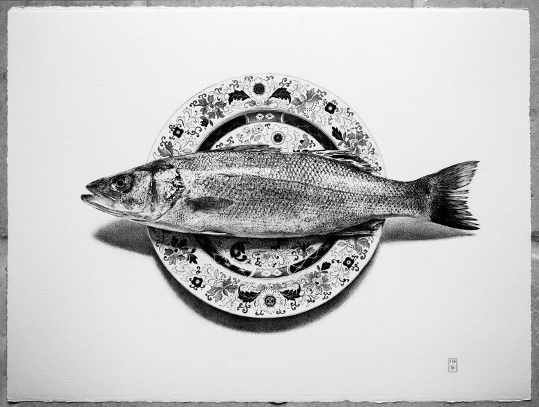 Image of The Sea Bass - Limited Edition Print