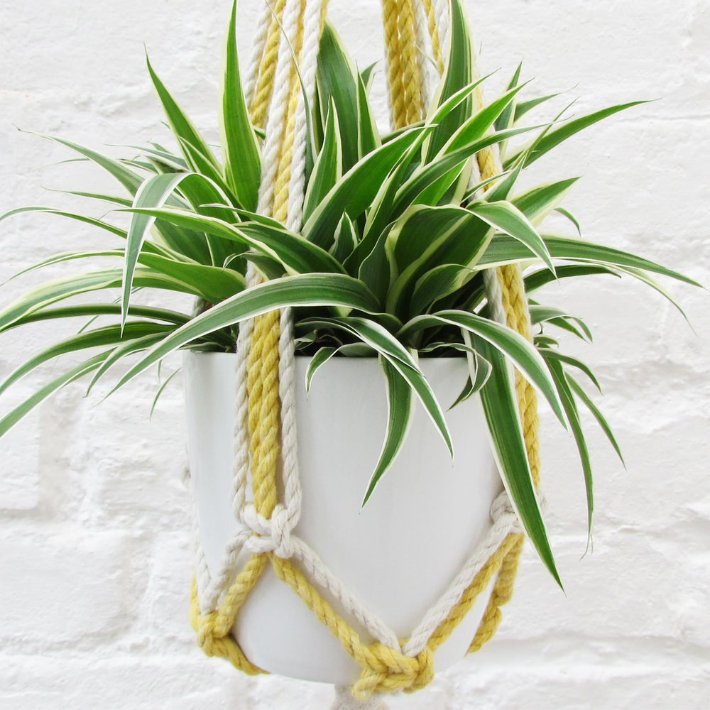 macrame plant hanger instructions