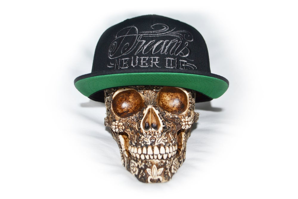 Image of DREAMS NEVER DIE SNAPBACK