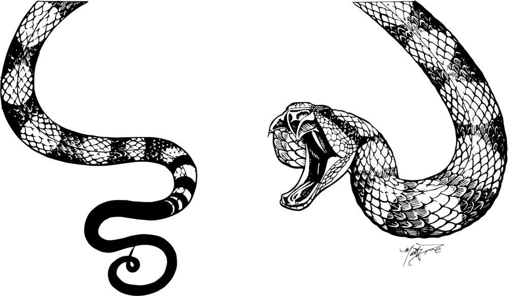 "Image of Matt Dove designed ""venomous"" t-shirt"