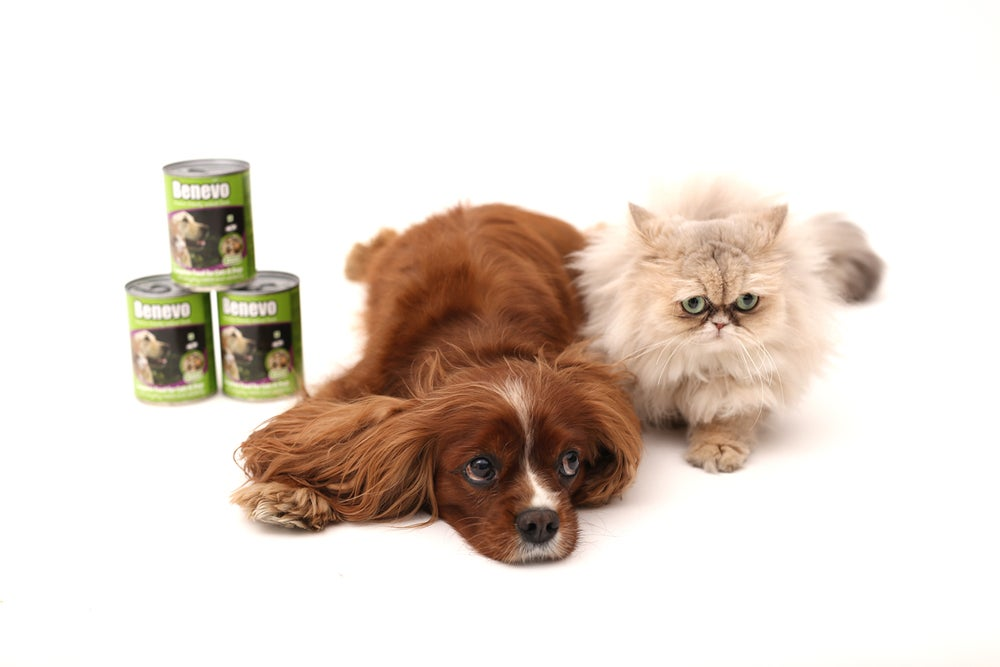 Image of Benevo Duo vegan dog and cat food