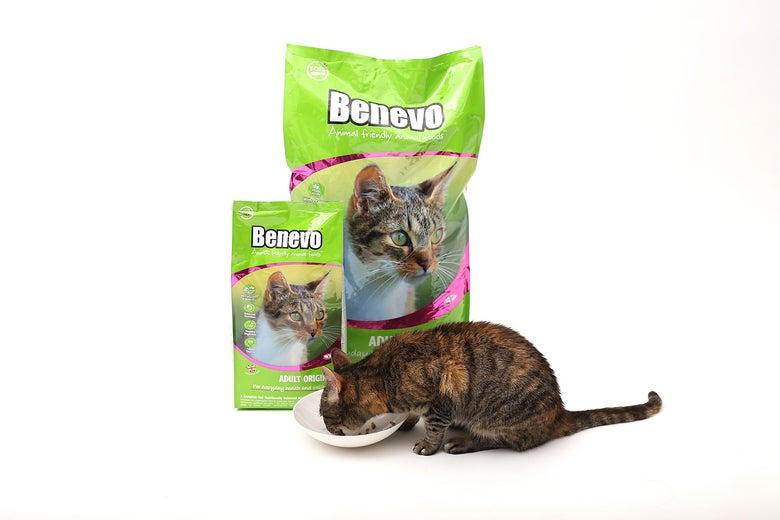 Image of Benevo Cat