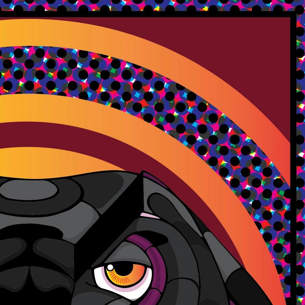 Image of Black panther