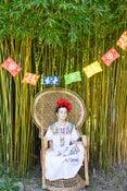 Image of Fiesta Garland