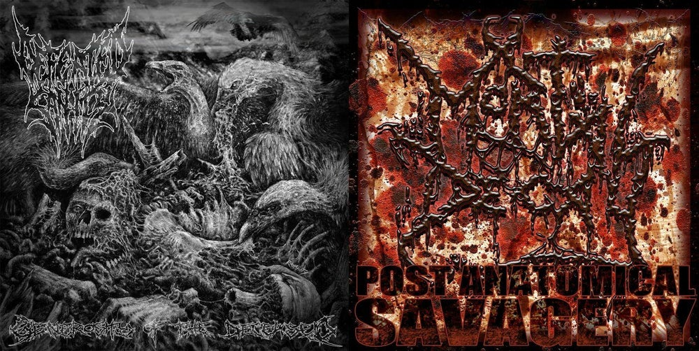 Image of Mortal Decay / Defeated Sanity