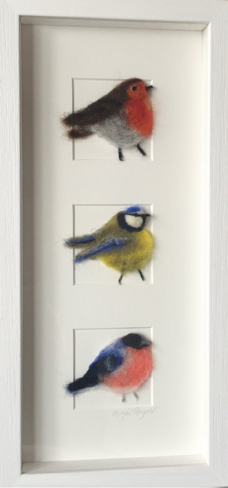 "Image of ""three in a Box British Birds"""