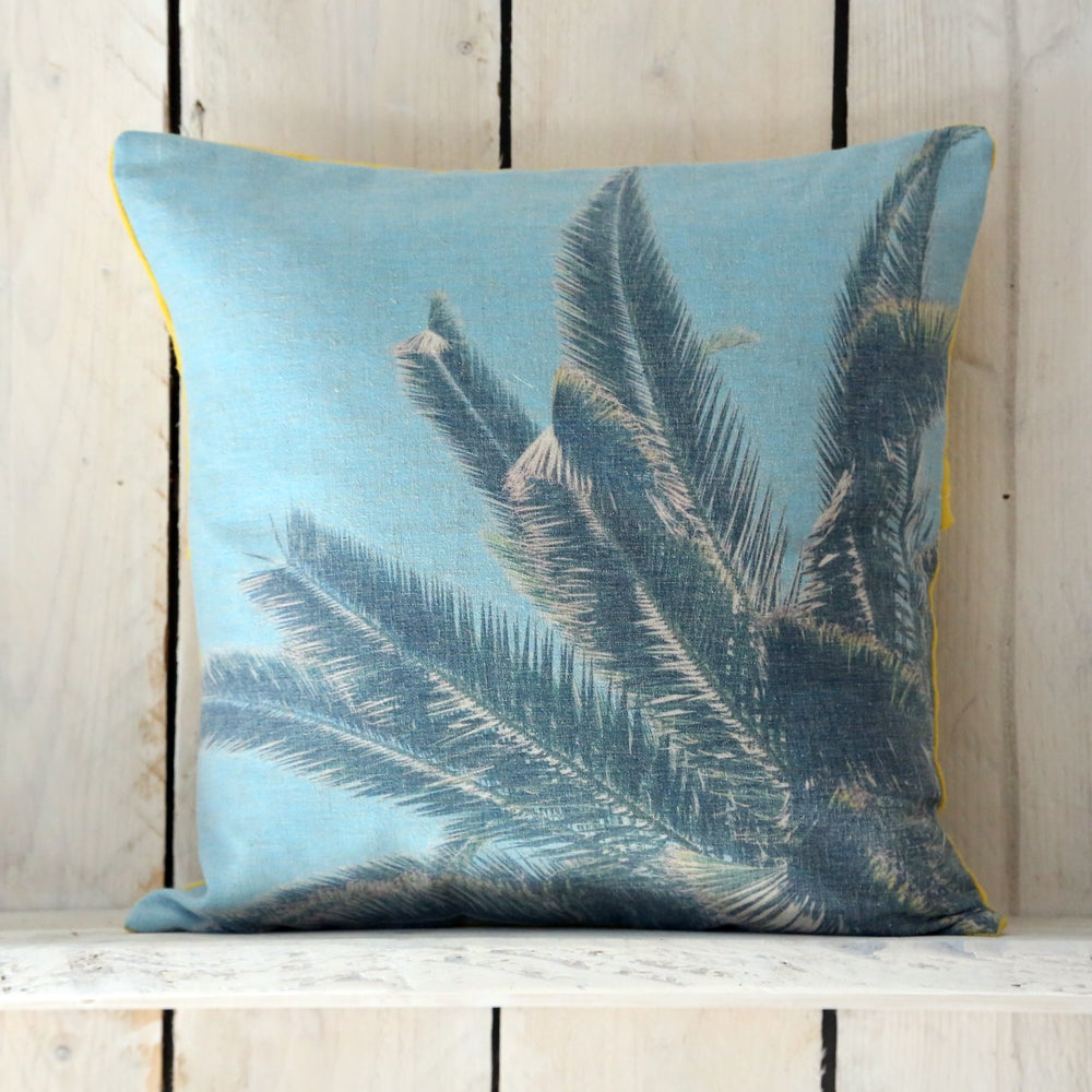 Image of Palm tree