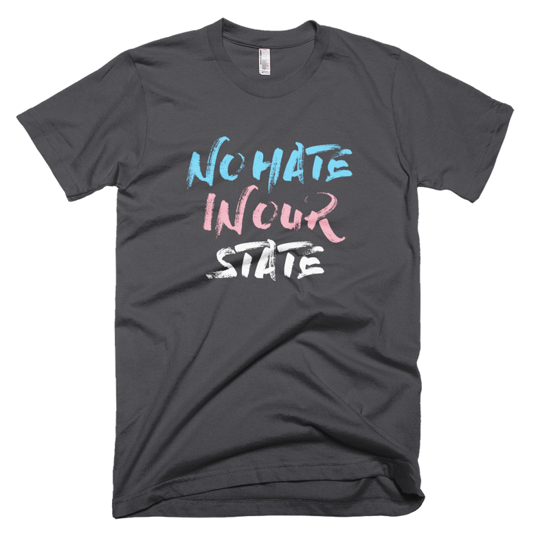 Image of No Hate In Our State T-Shirt in Asphalt