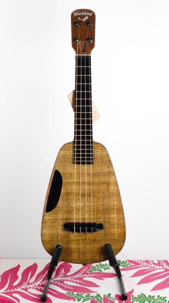 Image of Blackbird Clara Concert Ukulele with MiSi Rechargable Pickup