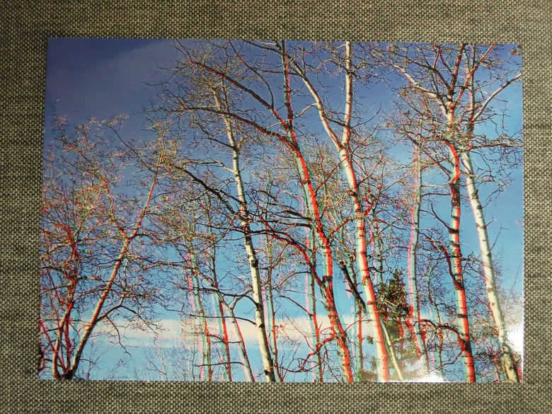 Image of 3d postcard - poplar