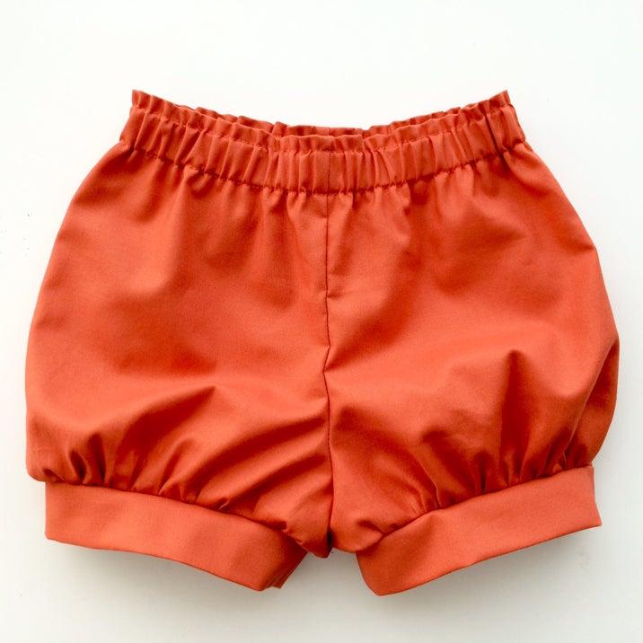 Image of Meyer Shorts (Terra Cotta)