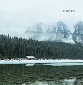 "Image of Tigers ""S/T"""