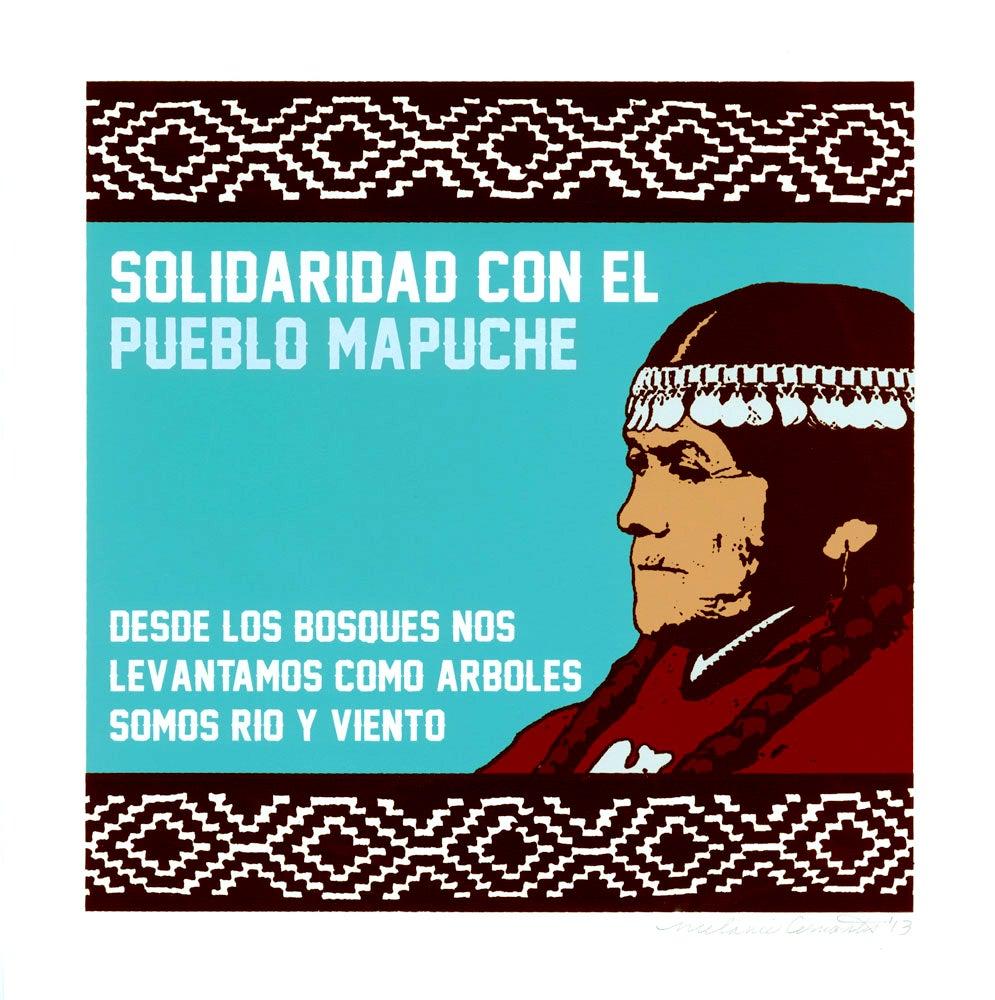 Image of Solidaridad Con El Pueblo Mapuche (2013)