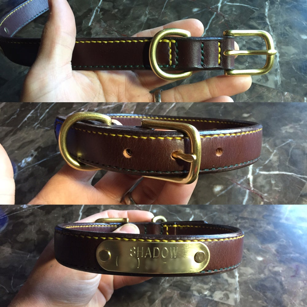 Image of The Dog Belt