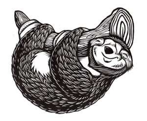 Image of Cute Little Sloth T-Shirt